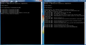 PHPUnit+Selenium执行情况